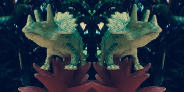 Trig - mirror image