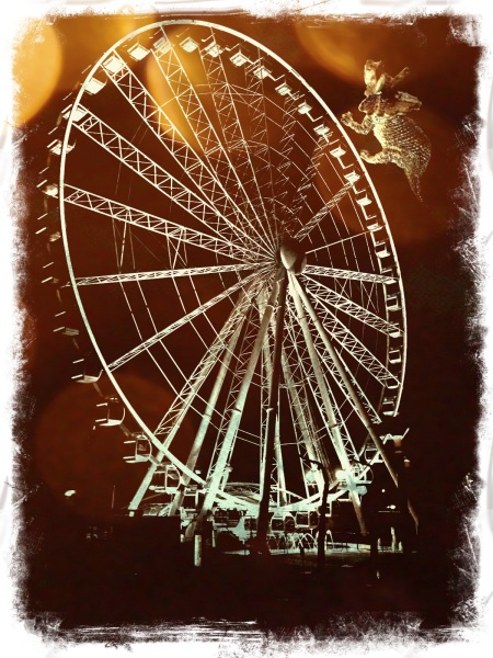 Trig - ferris wheel